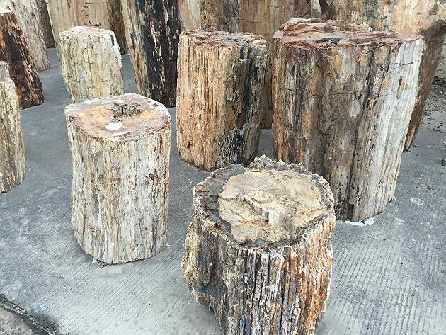 Petrified wood stone stool